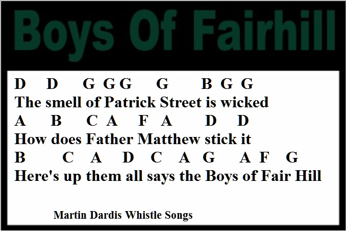 Boys Of Fairhill Tin Whistle